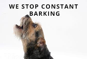border-barking