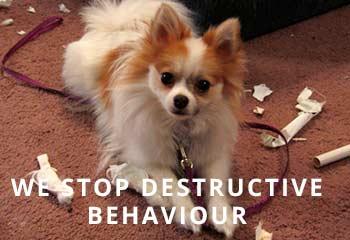 Destroying