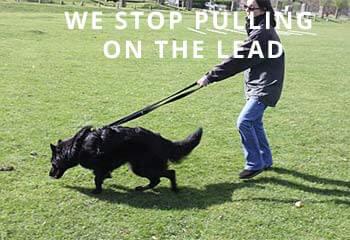 Lead-Pulling