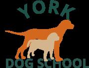 York Dog School